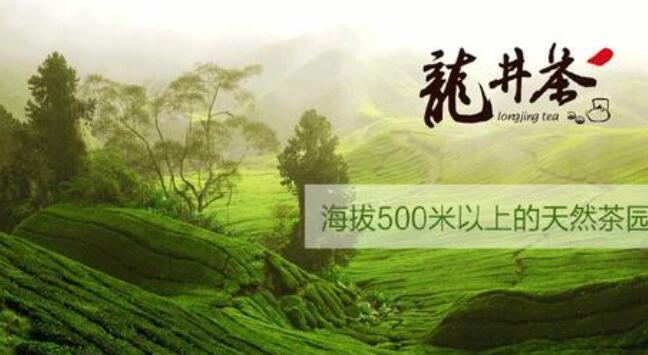 浙江杭州茶叶批发市场有哪些